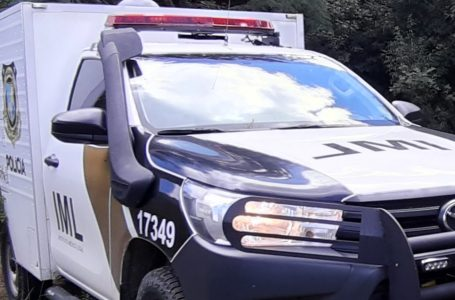 Homem morre após ser atropelado na PR-447, em Cruz Machado