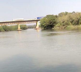 Vídeo: Peixes Curimbatás são encontrados mortos no Rio Iguaçu