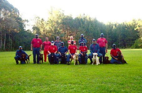 Filhotes passam por treinamento de busca e resgate na Floresta Nacional de Três Barras