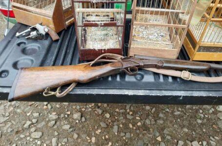 Polícia Ambiental encontra aves em cativeiro, armas e munições em Três Barras