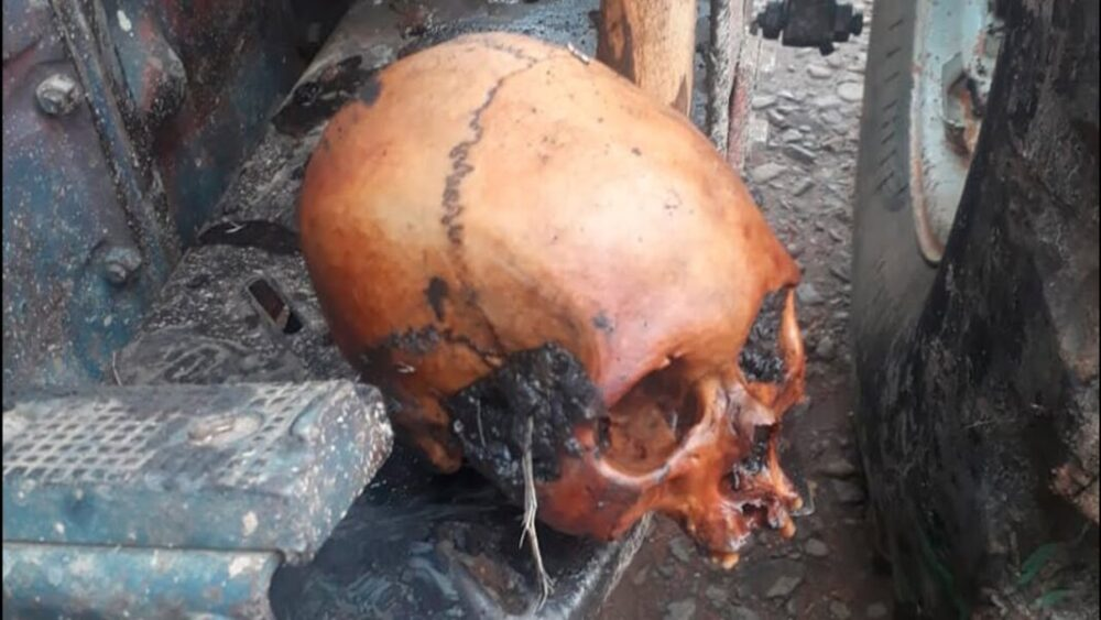 Crânio é encontrado enterrado em lavoura no interior de Canoinhas