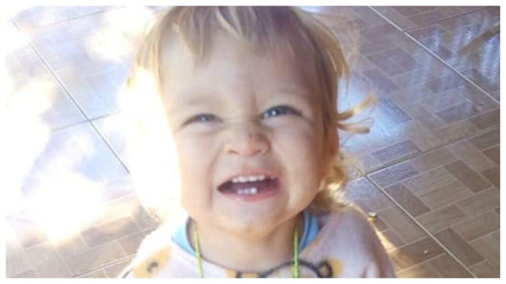 Criança de 1 ano e 8 meses morre no Paraná após ser picada por escorpião
