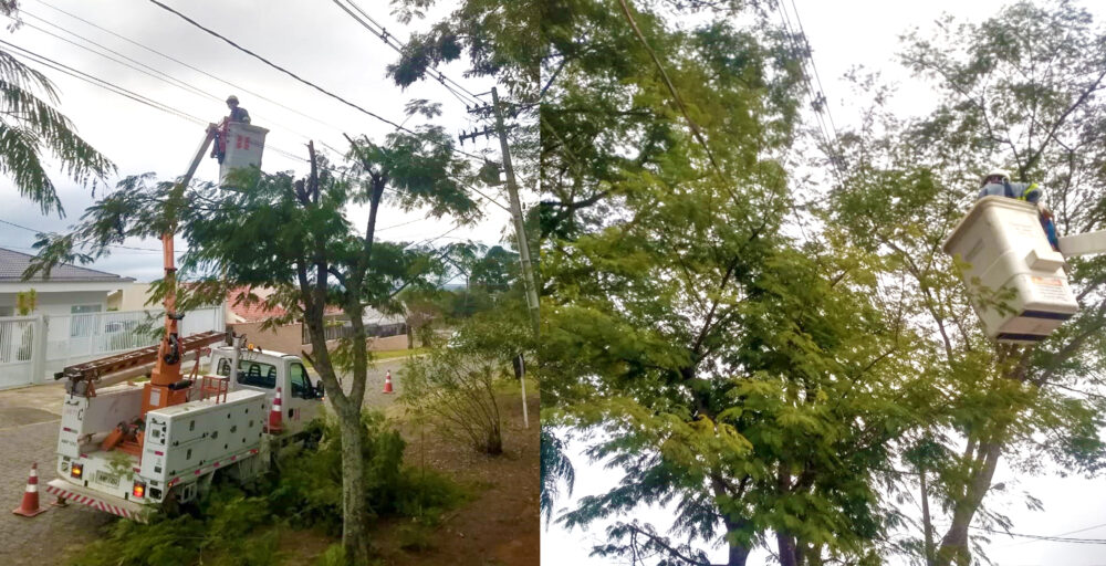 Copel realiza força-tarefa com poda em árvores de todo o perímetro urbano de São Mateus do Sul