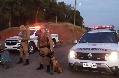 Cães reforçam trabalho da PM no combate ao crime em Canoinhas