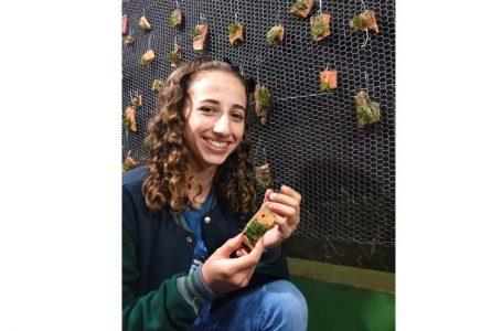 No Paraná, aluna de colégio estadual participa de feira científica de Londres com pesquisa sobre orquídeas