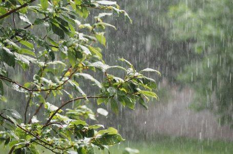 Previsão apresenta chuva e máxima de 13ºC até o fim de semana em São Mateus do Sul
