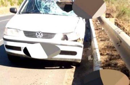 Caminhoneiro morre atropelado na BR-153 em União da Vitória